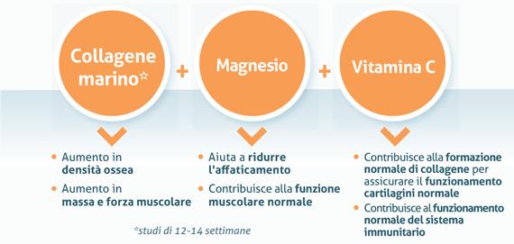 Polvere di collagene marino naturale + magnesio + vitamina C, per lo sport e la performance