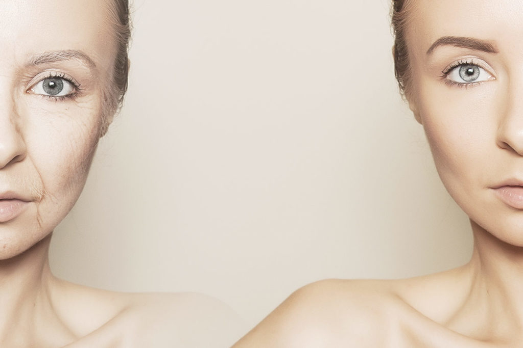 i ruoli del collagene